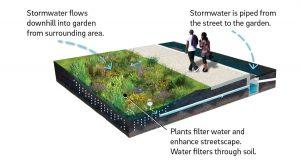 rain garden _ green infrastructure